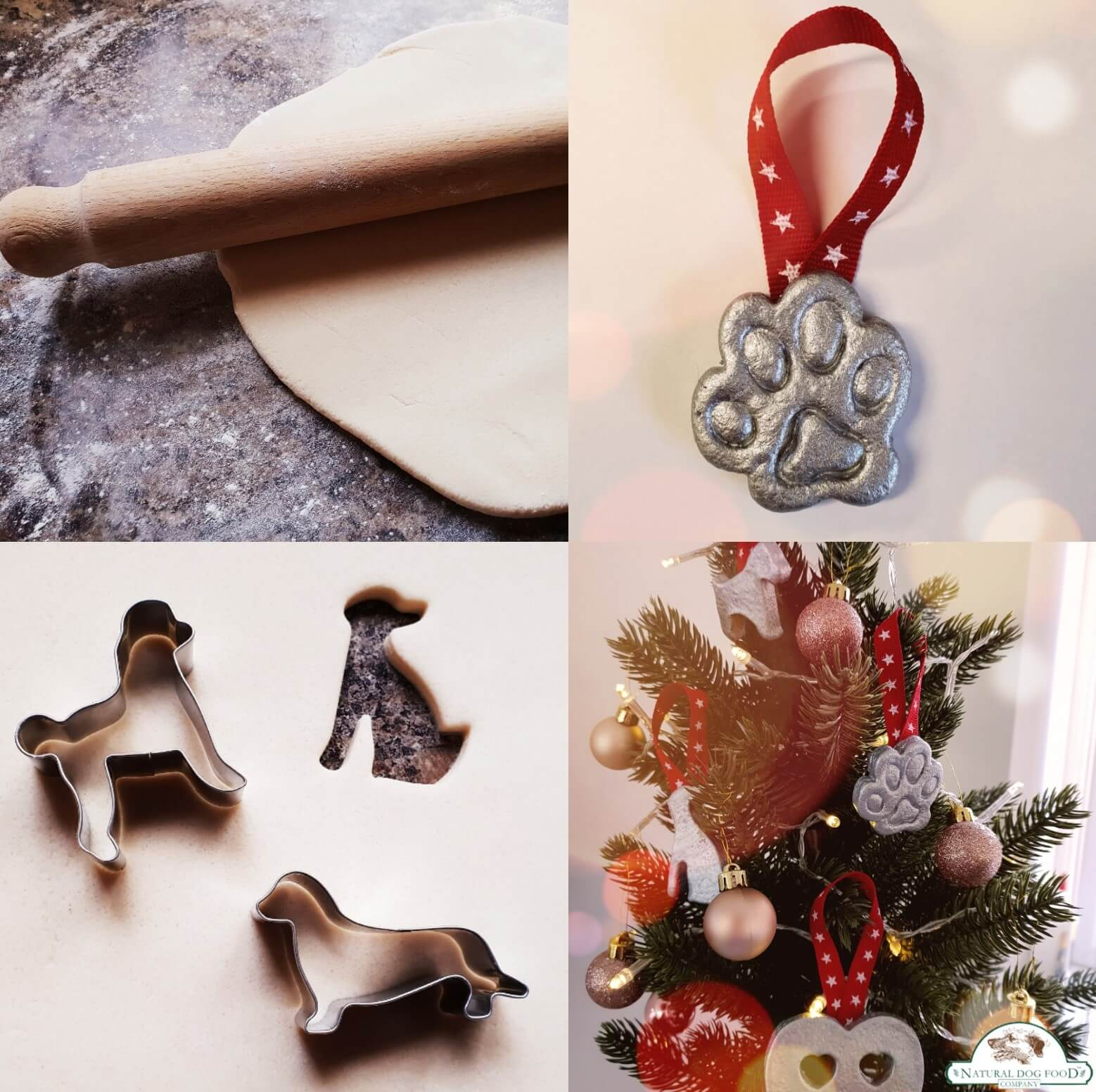 Make Your own Christmas Decoration!