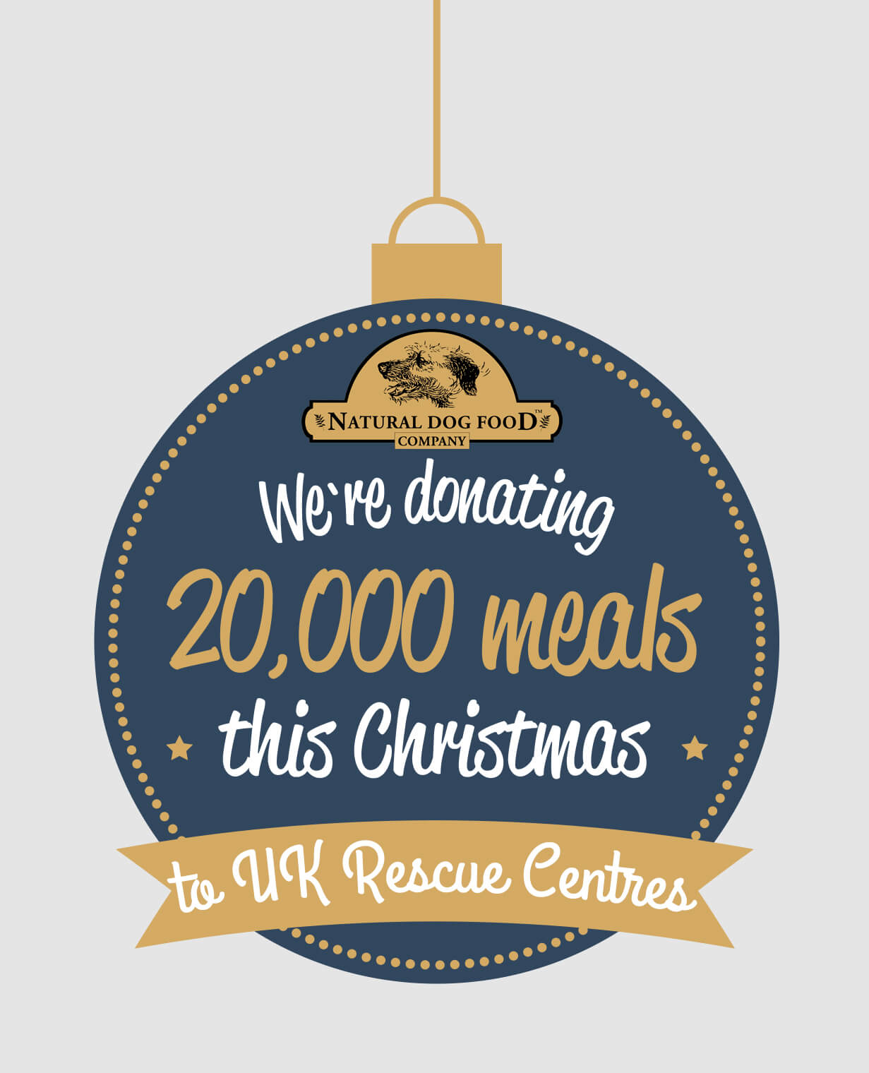 We are donating meals this Christmas!